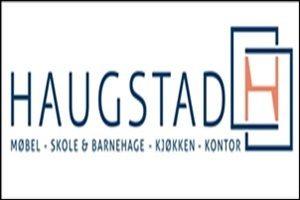 Haugstad-logo-farge-300x200